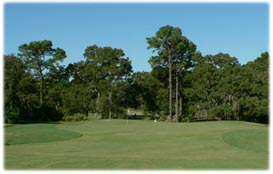 the Pine golf course - Sugarmill Woods